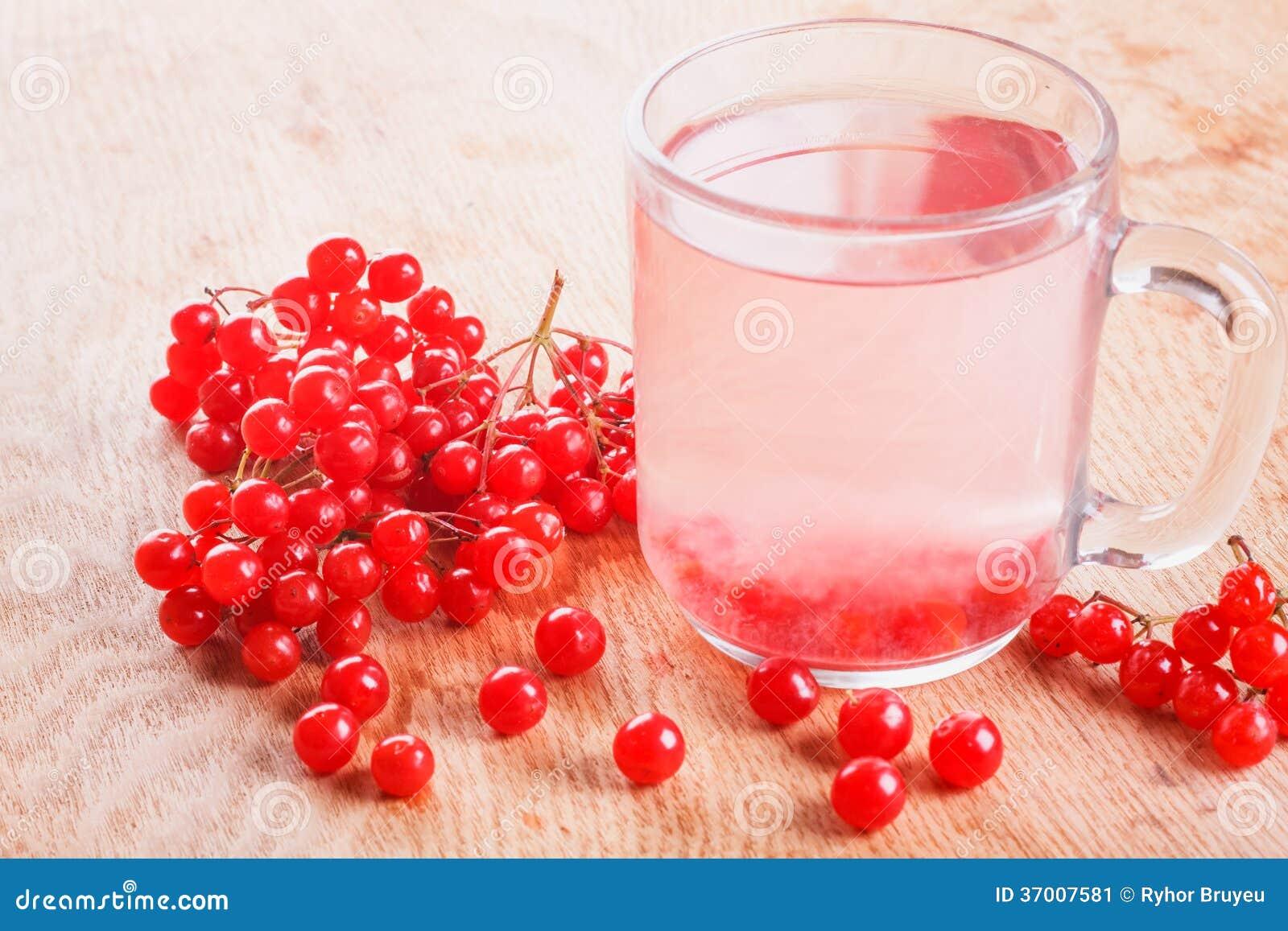 Taza de Viburnum maduro rojo de la bebida