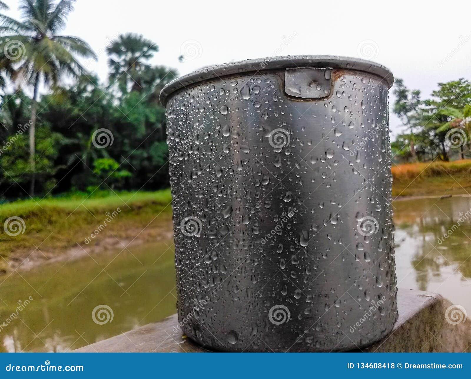 Taza del agua cerca de la charca en un día lluvioso