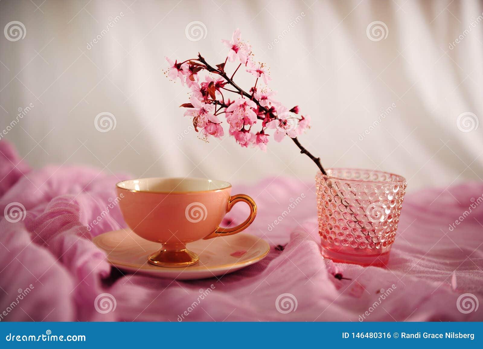 Tazza e Cherry Blossoms di caffè d annata rosa