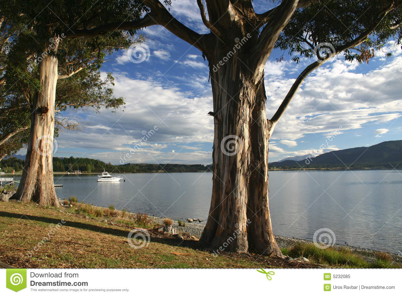 Te Anau lake stock image  Image of scenery, resort, spring