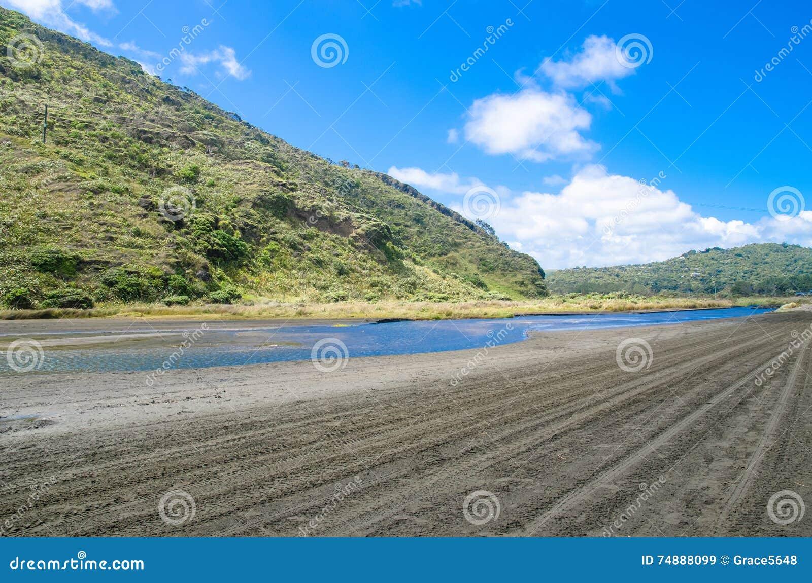 Te Henga (praia de Bethells) em Nova Zelândia