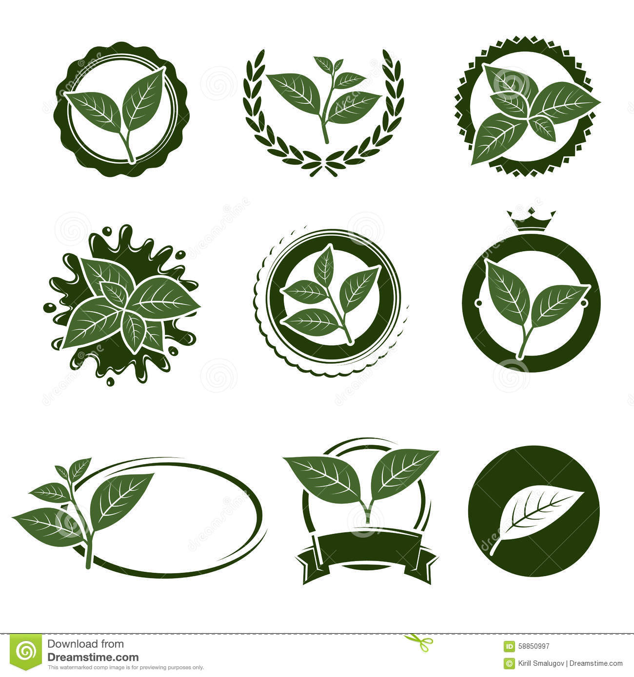 Tea Leaves Label Set. Vector Stock Vector - Image: 58850997