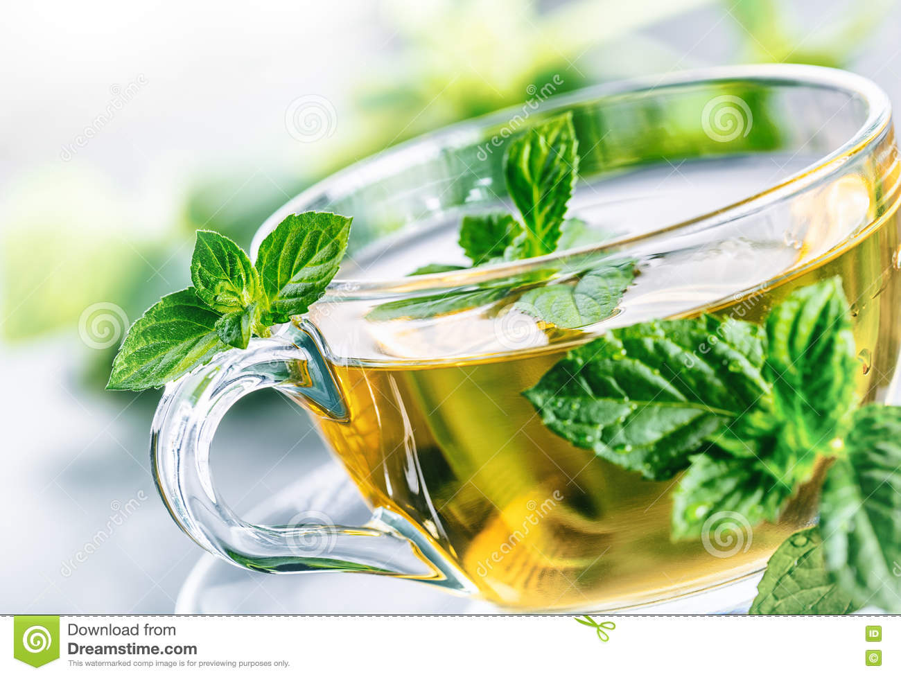 how to use mint leaves in tea