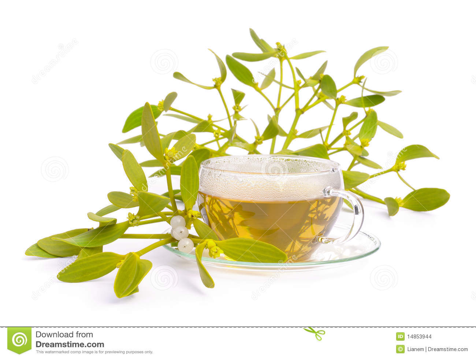 Tea mistletoe