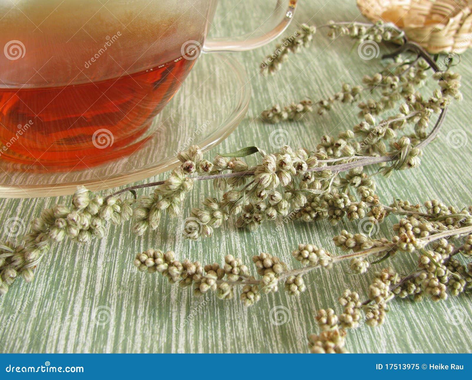 Tea with mugwort stock image  Image of artemisia, mugwort