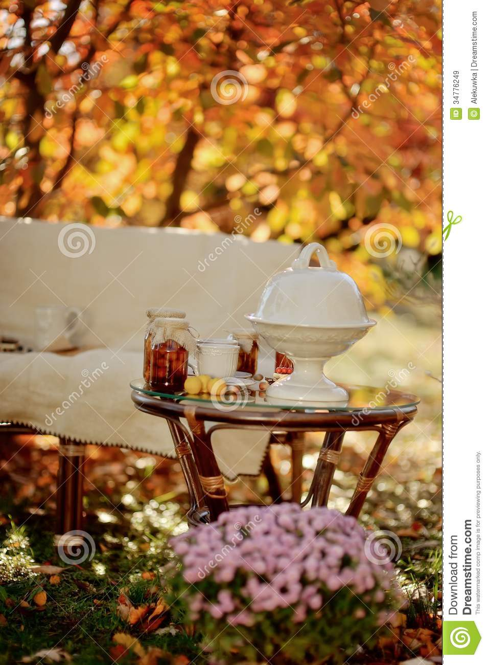 Tea Party On The Nature Royalty Free Stock Images - Image ...