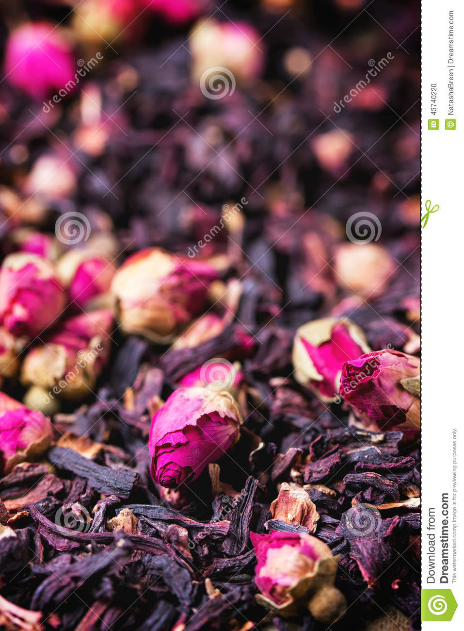 Tea roses and dried hibiscus flower stock photo image of tea roses and dried hibiscus flower izmirmasajfo Images