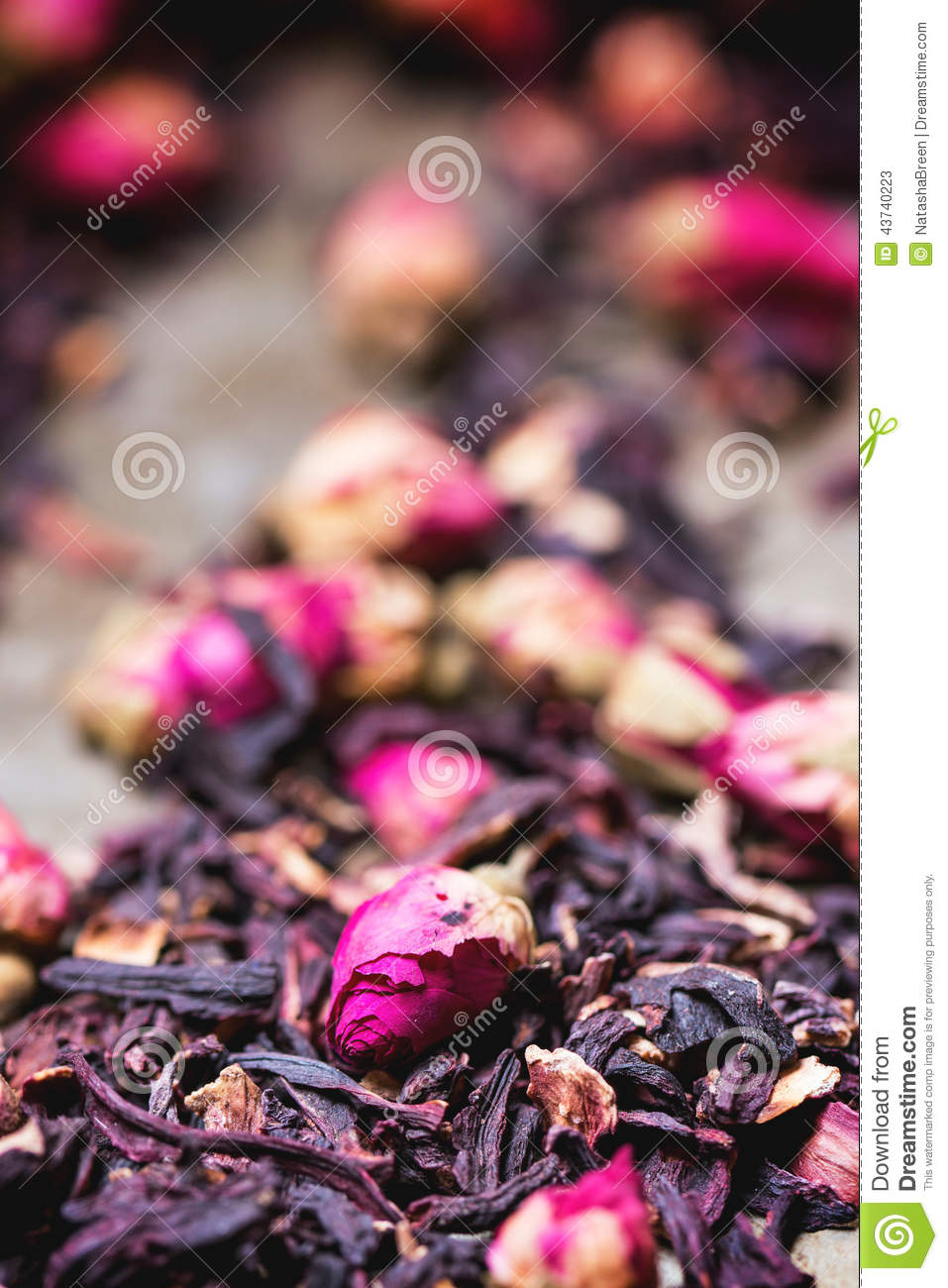 Tea roses and dried hibiscus flower stock image image of tea roses and dried hibiscus flower background blossom izmirmasajfo