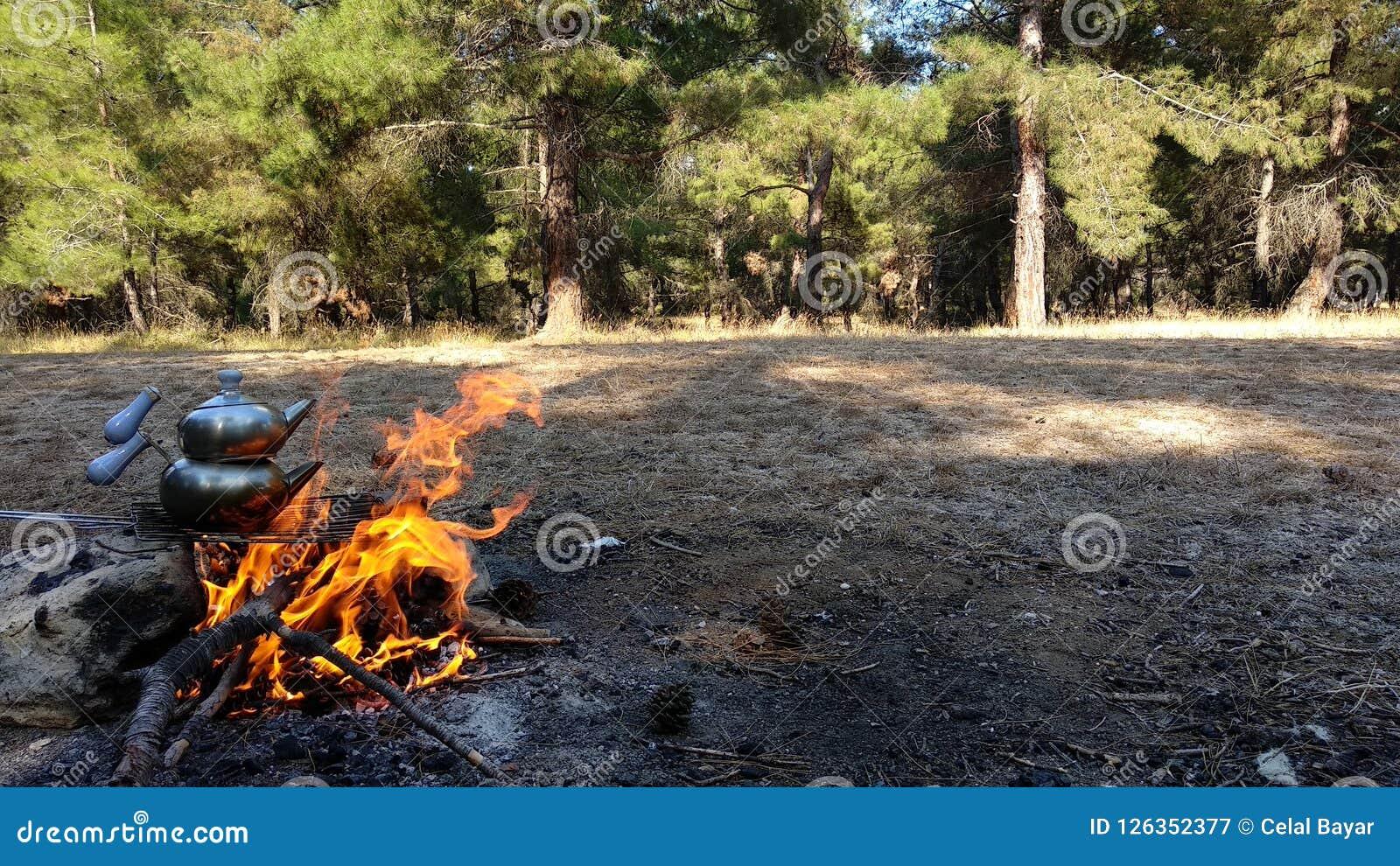 Tea in wood fire
