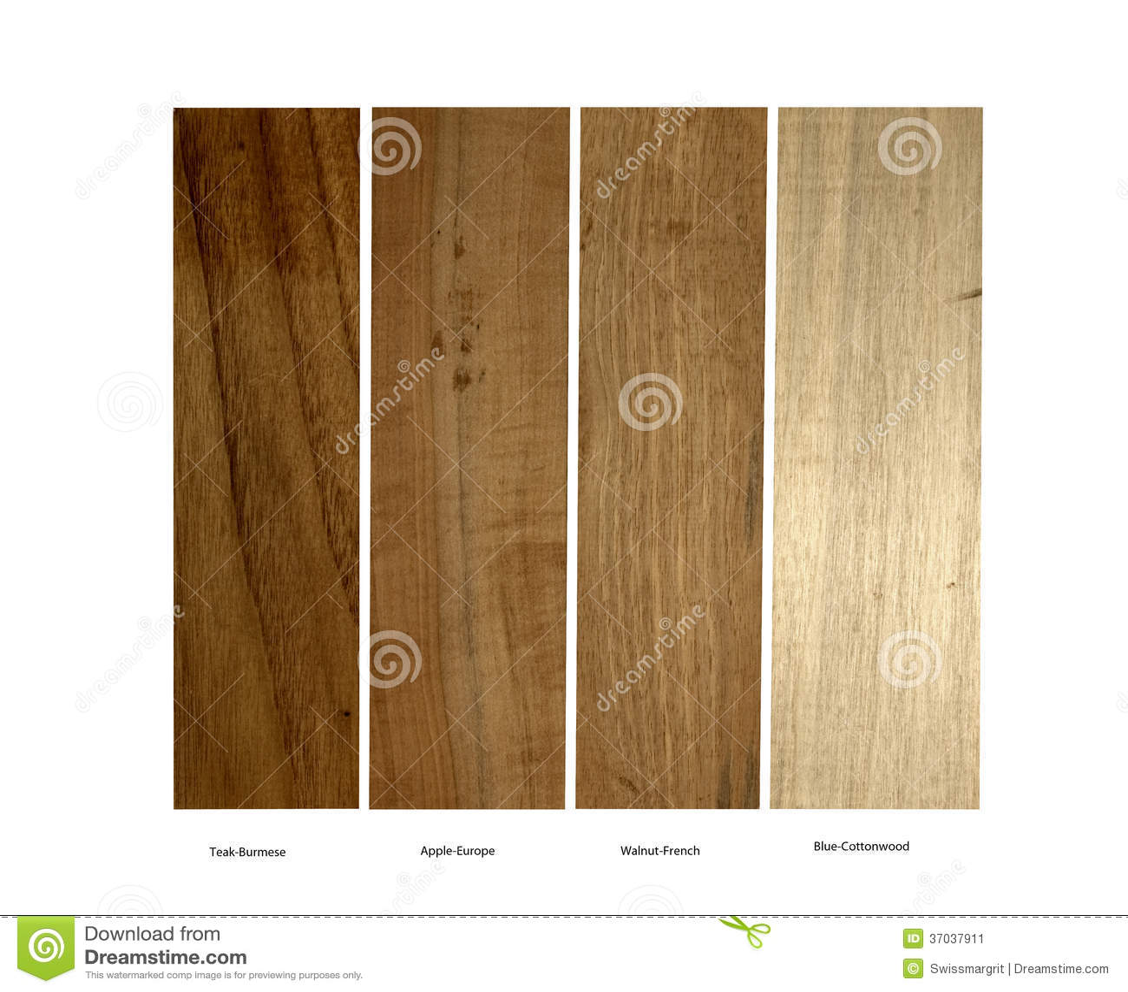 Teak Apple Walnut And Blue Cottonwood Samples Stock Image