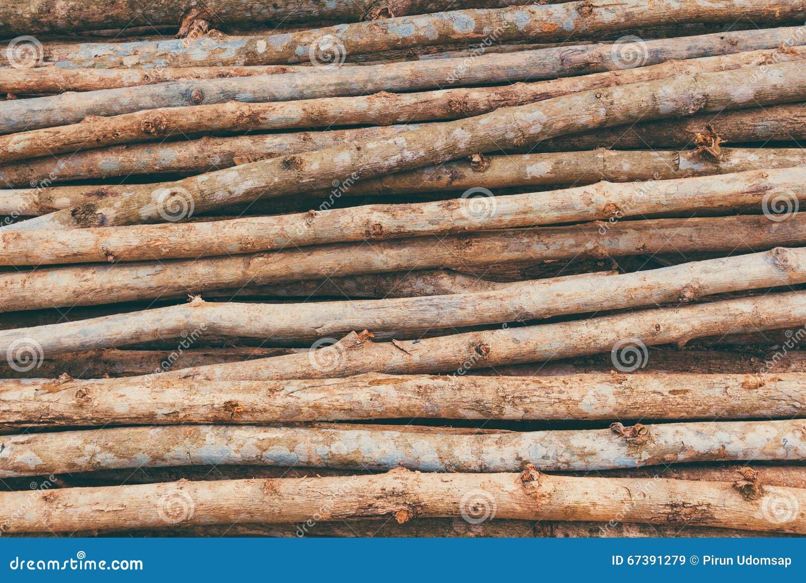 Teak Wood Stocks ~ Teak wood stock photo image