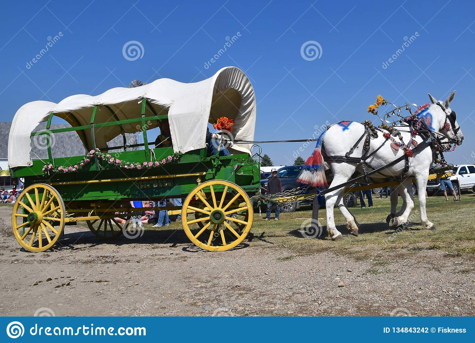 621 Decorated Wagon Photos Free Royalty Free Stock Photos From Dreamstime