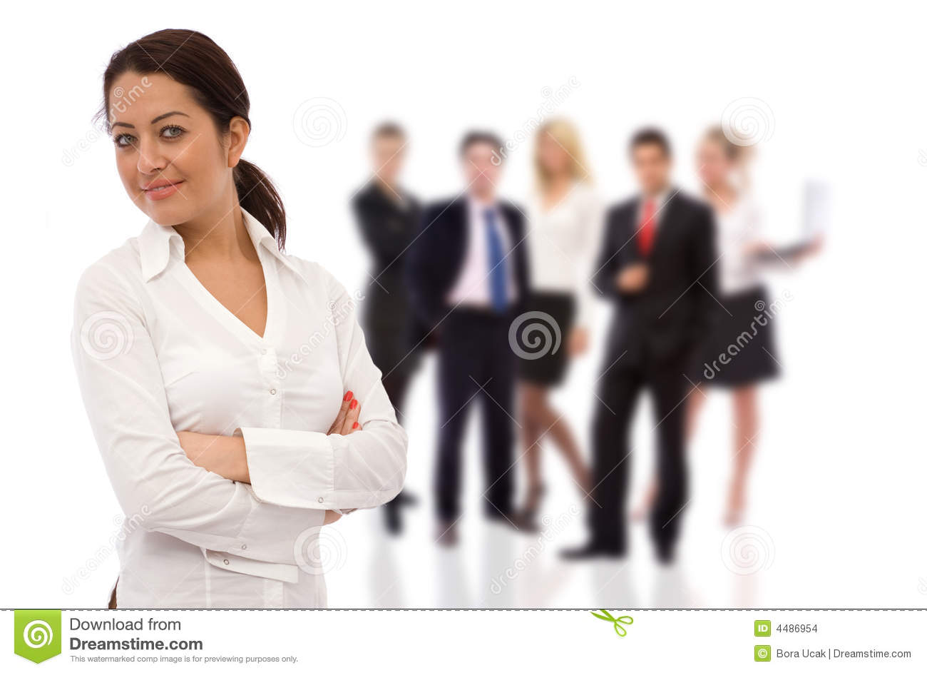 team leader stock images image  team leader
