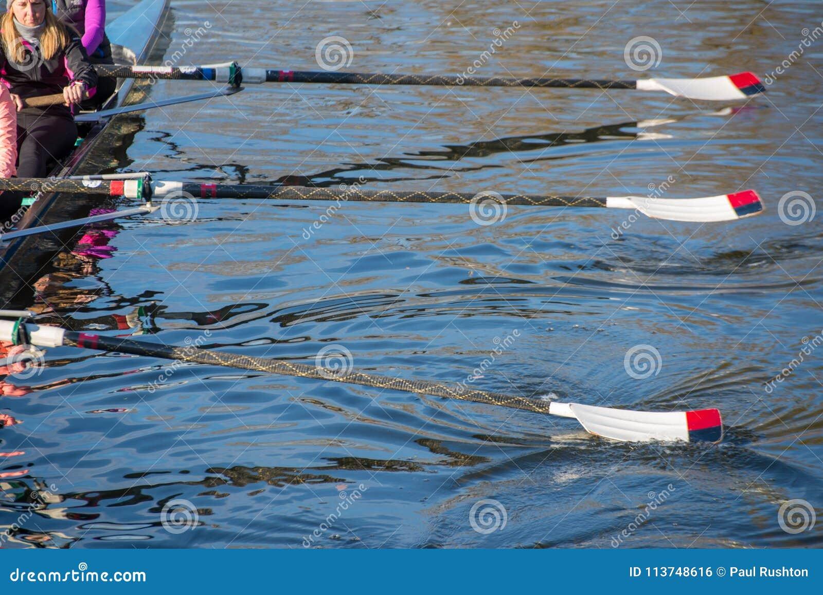 Team van roeiers die die voor regatta met roeispanen opleiden van water worden opgetild