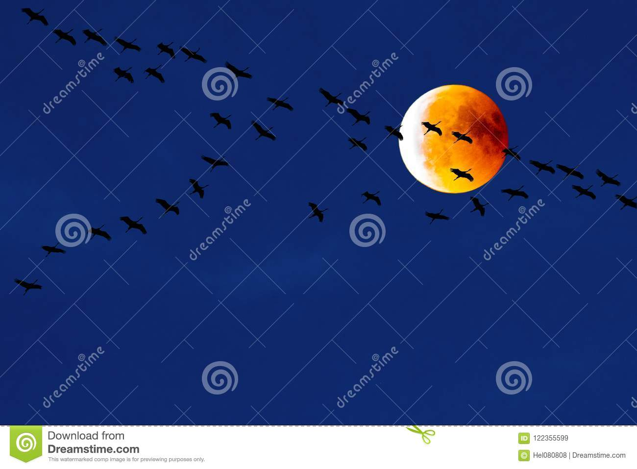 Teamwork: Cranes flying in front of blood moon, partial lunar eclipse, migration birds, flying cranes
