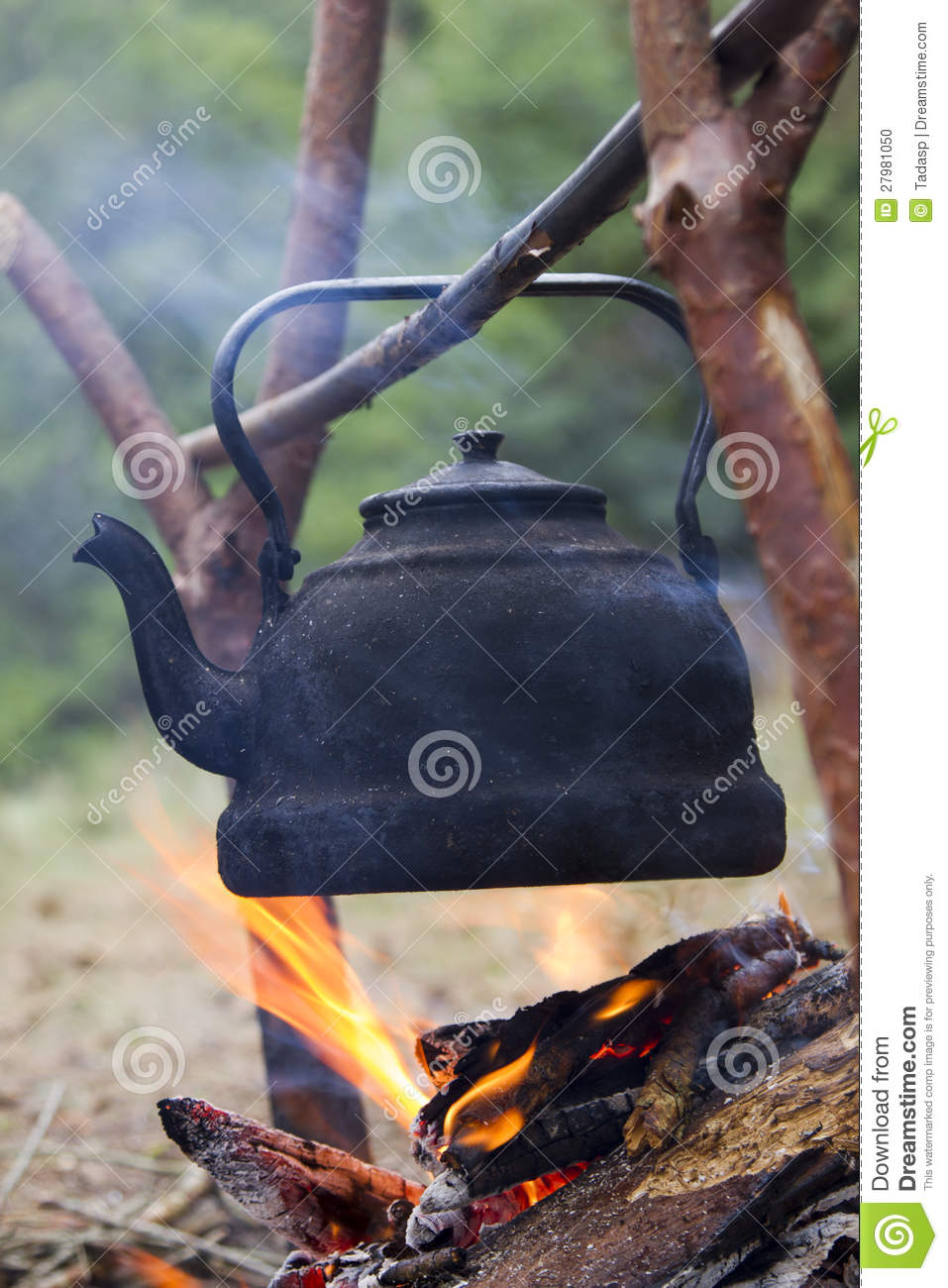 Teapot Over Campfire Stock Photo Image Of Coal Natural