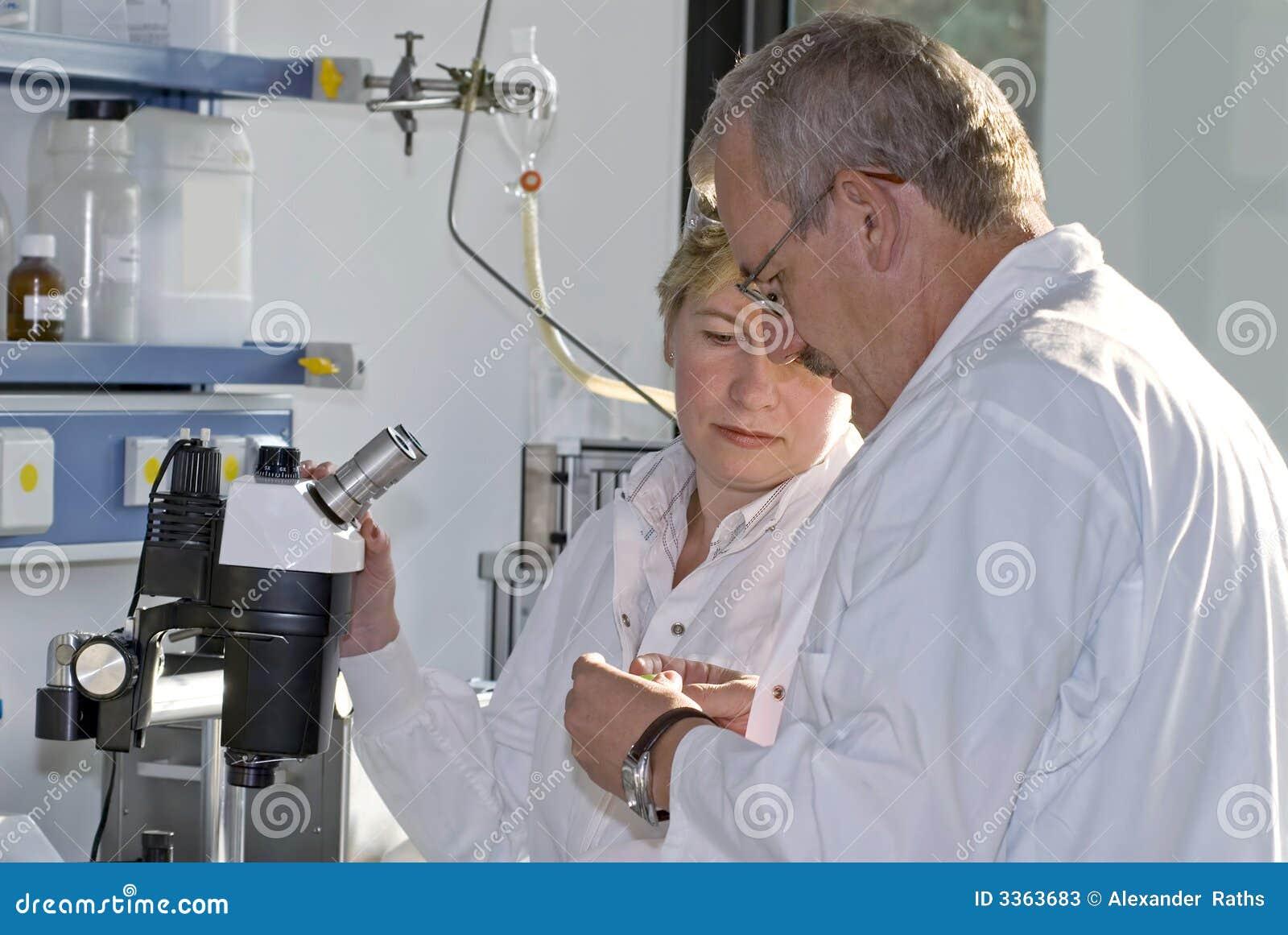 Technicy badań 2