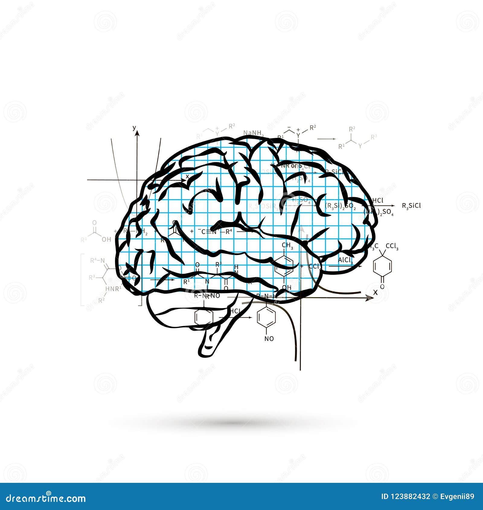 Techniczna hemisfera ludzki mózg, pojęcie ilustracja na bielu