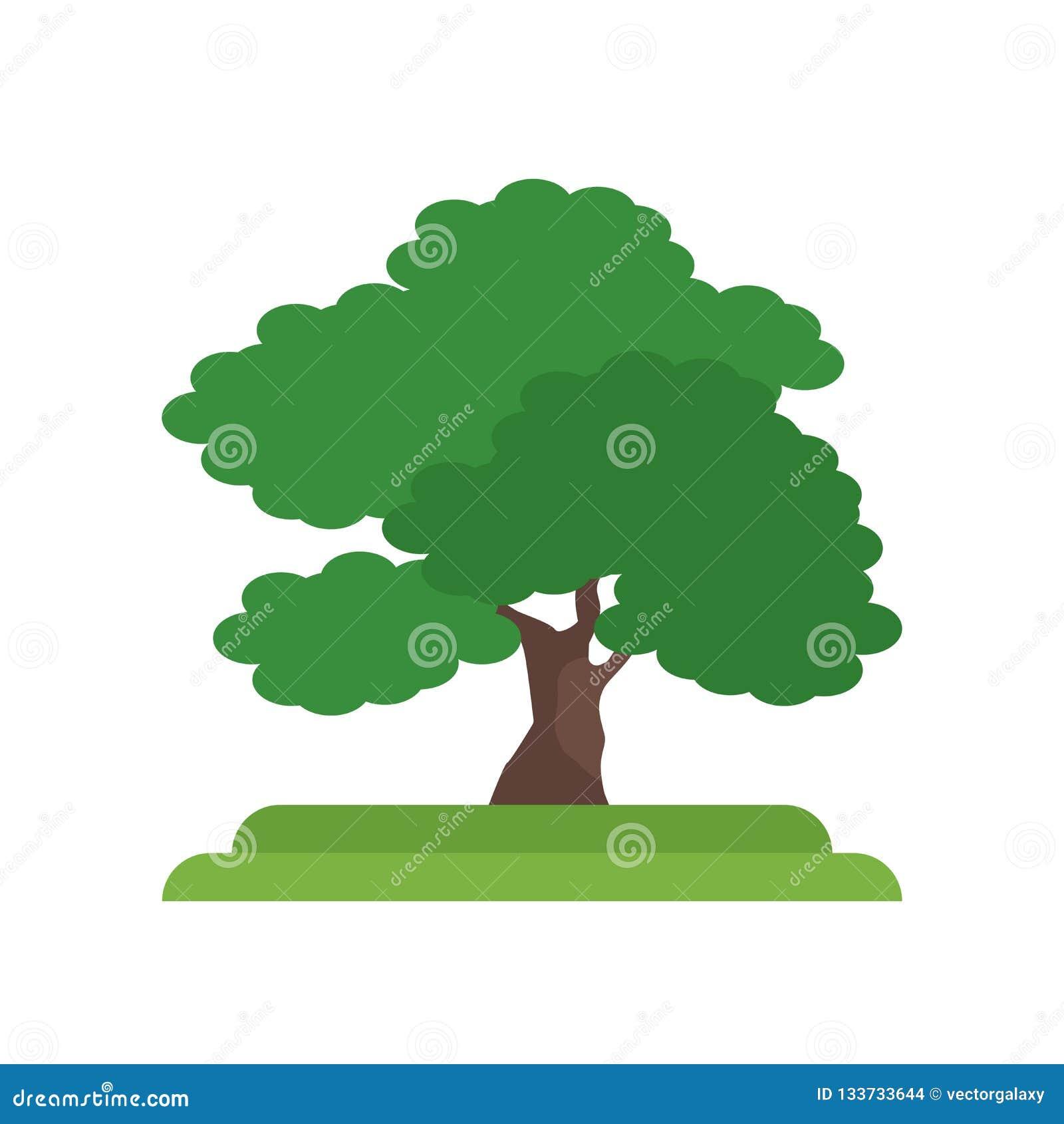 Tecken och symbol för vektor för symbol för träd för svart valnöt som isoleras på vit