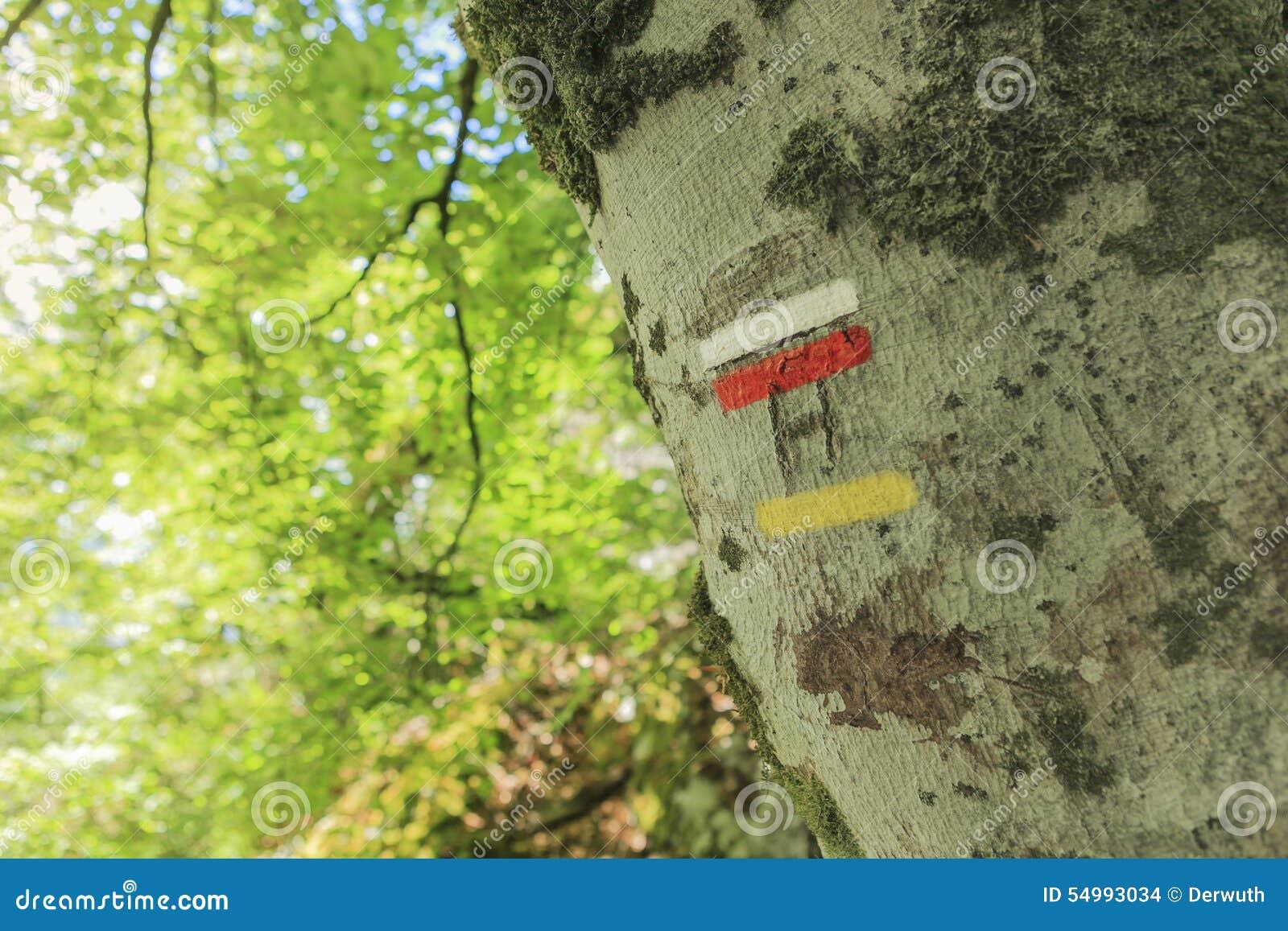 Tecken på en stam
