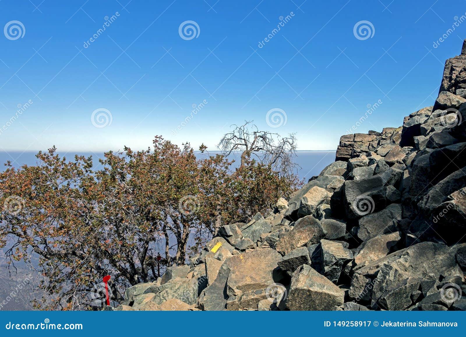Teckenstolpen på treken av La Campana National parkerar i centrala Chile, Sydamerika