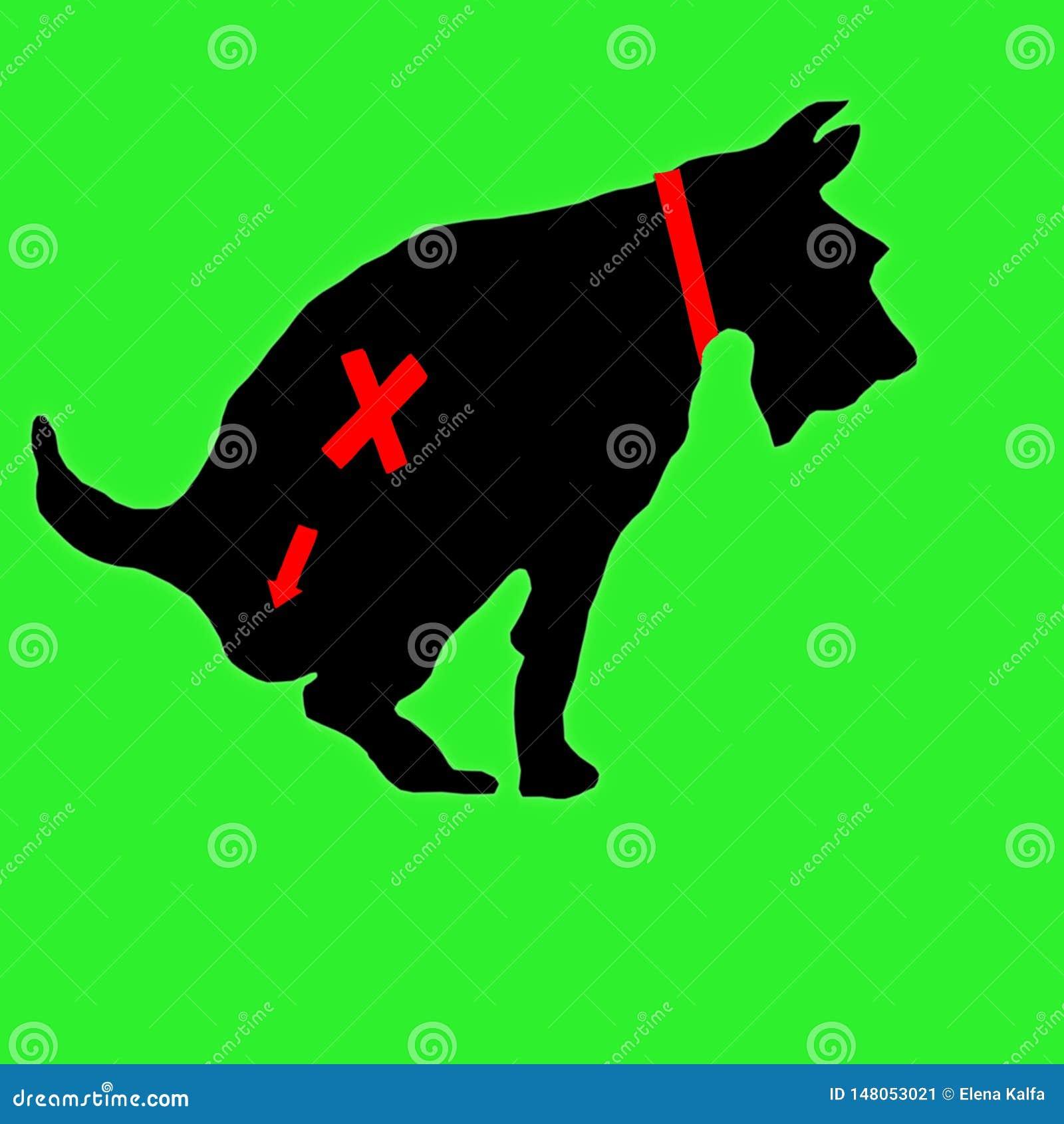 Tecknet som förbjuder hundkapplöpning från att gå till toaletten Hunden går till toaletten Hunden defekerar