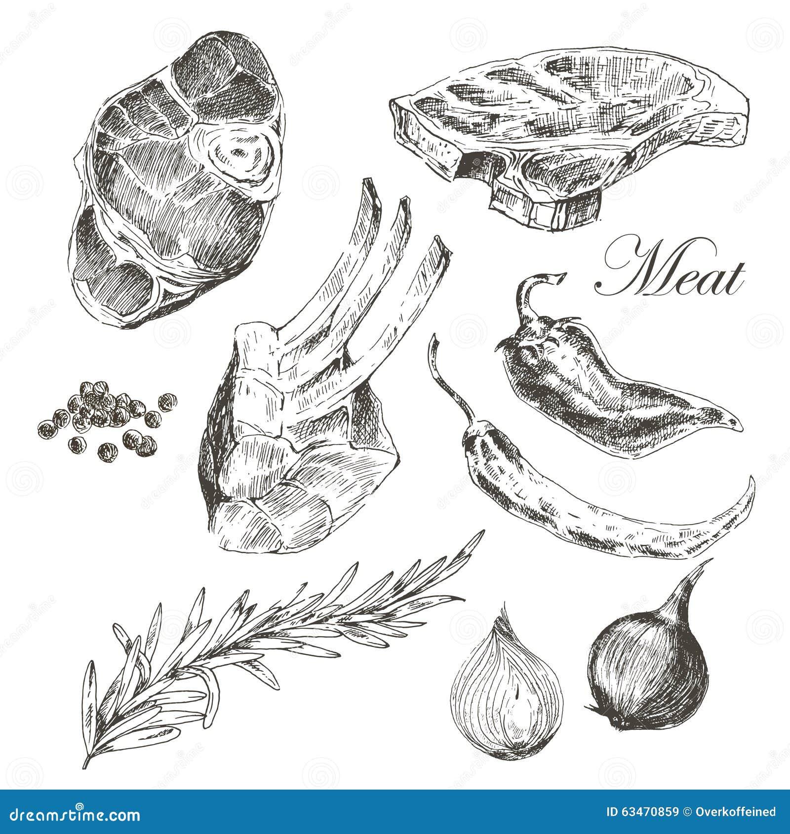 Teckning för hand för vektorbiffkött med peppar och