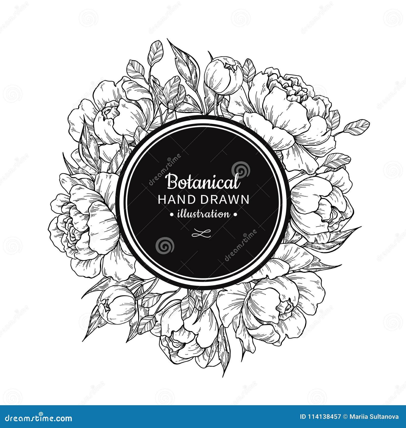 Teckning för ram för blommatappningvektor Pion, ros, sidor och ber