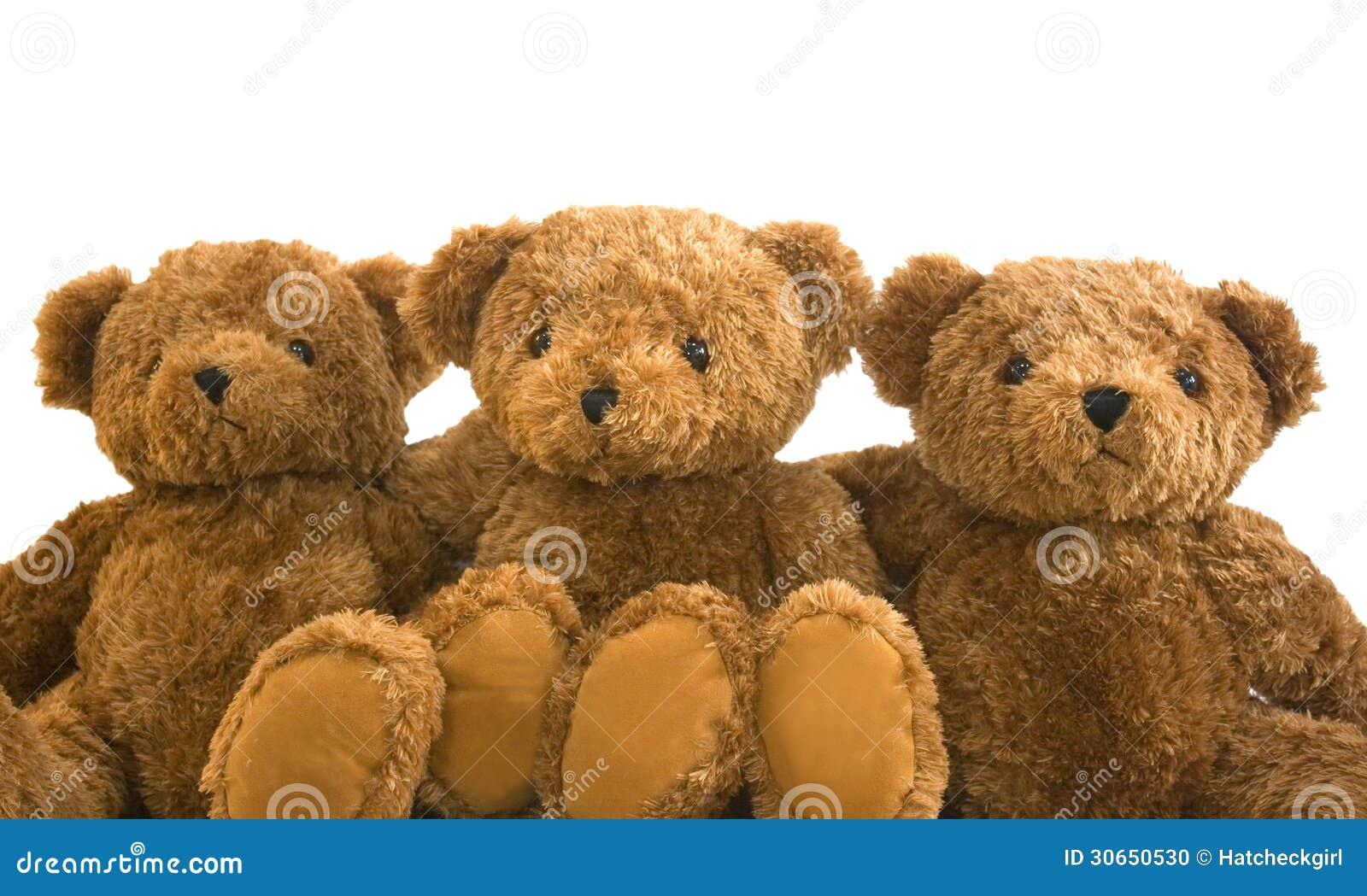 teddies stock photo