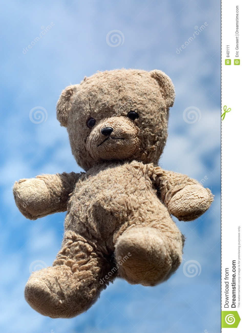 Teddy in the air