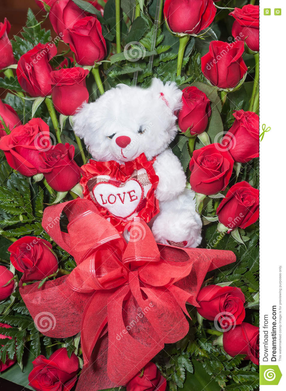 Teddy Bear Heart Roses Stock Photos