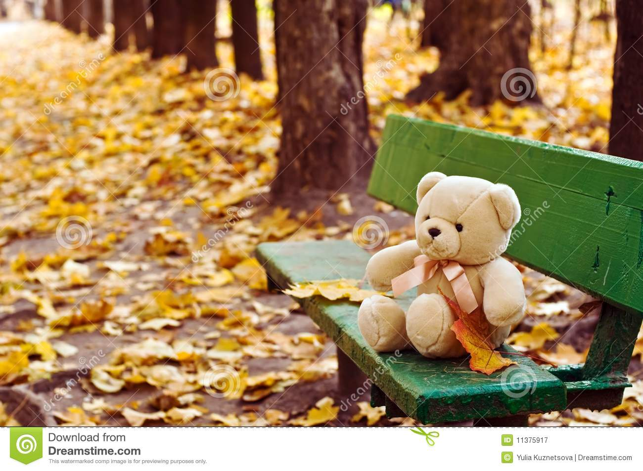 Teddy Bear On The Bench In Autumn Park Royalty Free Stock Photography ...