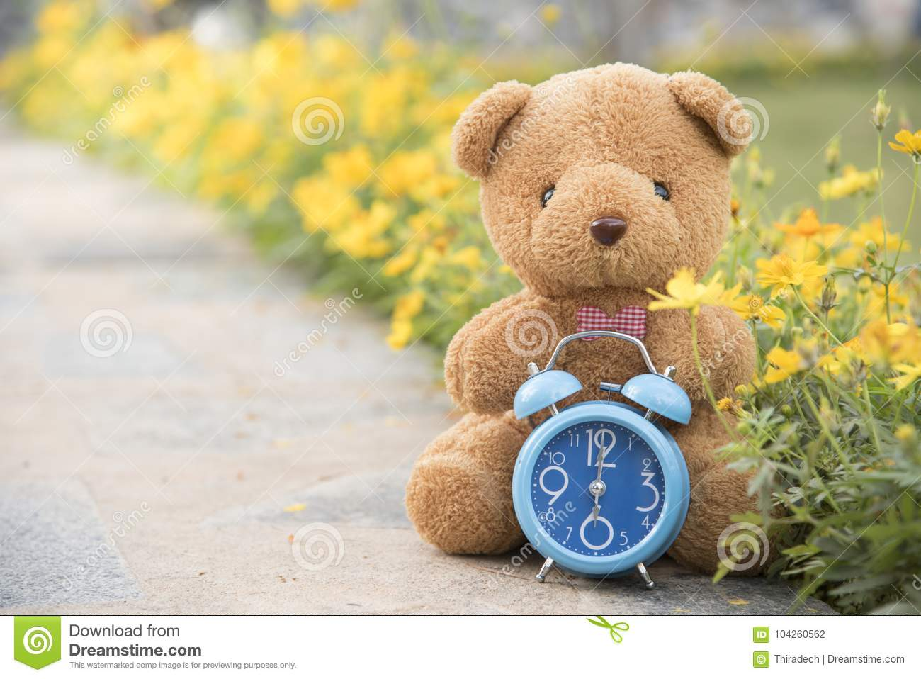 teddy bear with blue clock on backdrop stock photo - image of