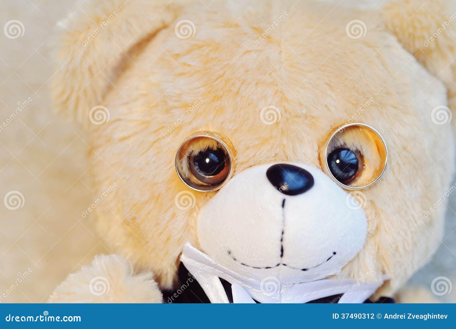 Teddy Bear con los anillos