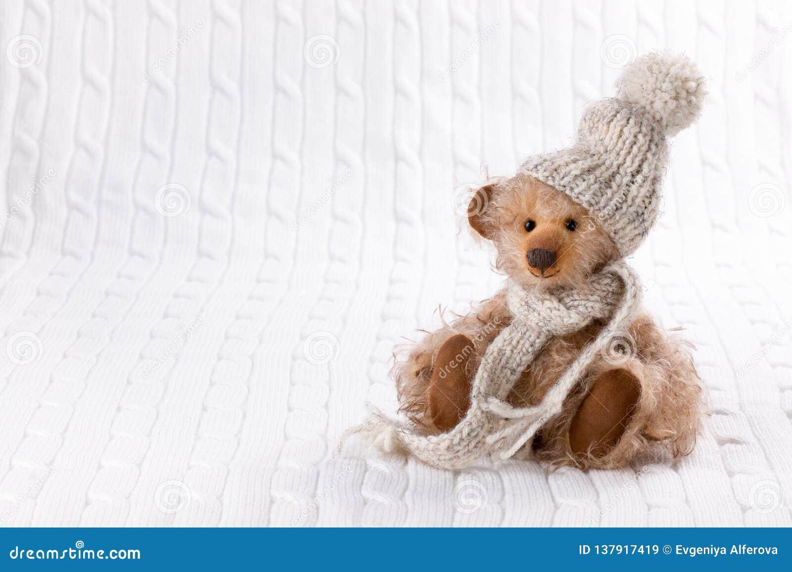 Teddy Bear in der Winter-Kleidung