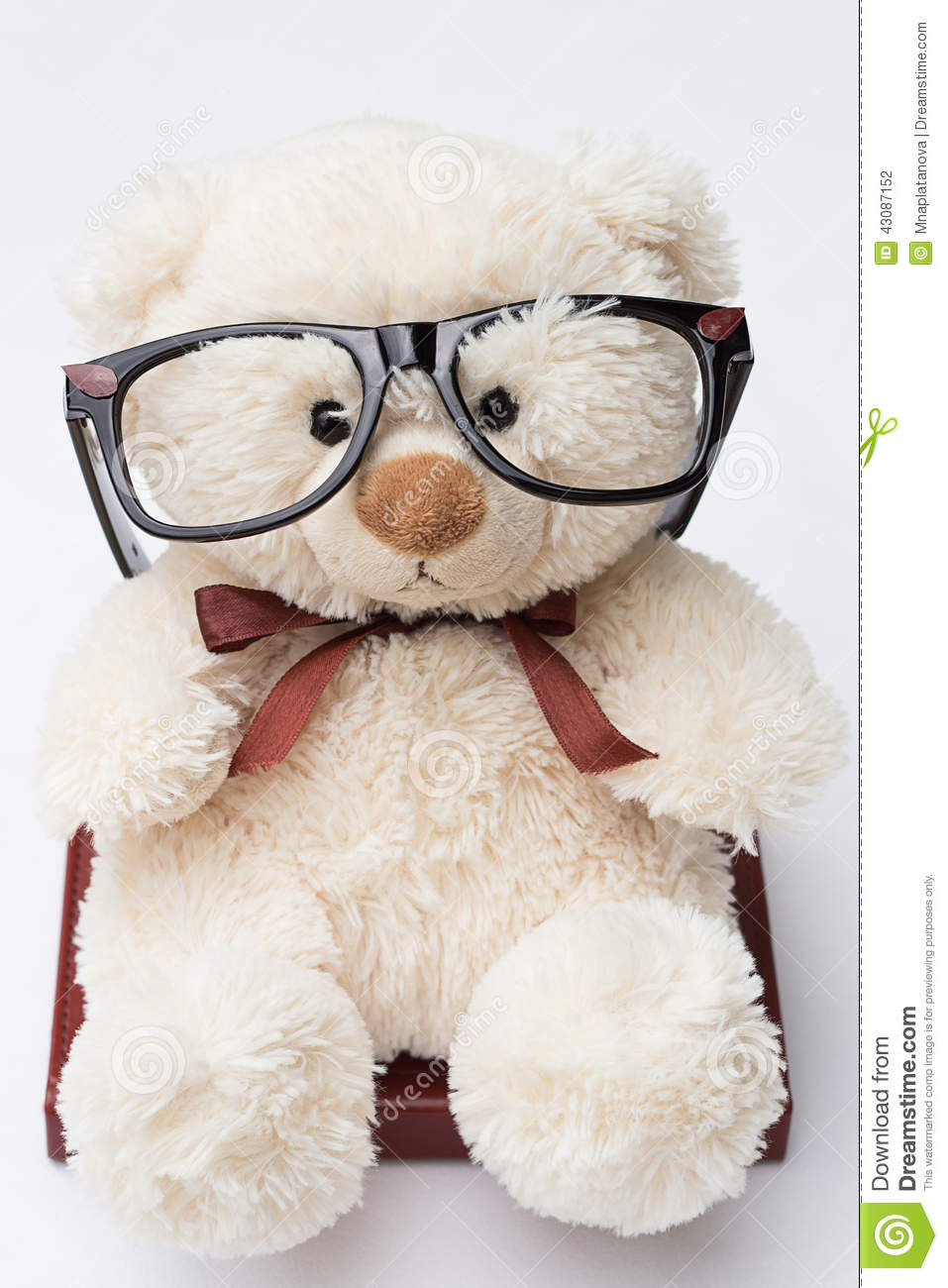 897783f1ba0 Teddy Bear With Glasses Sitting On A Book Stock Photo - Image of ...
