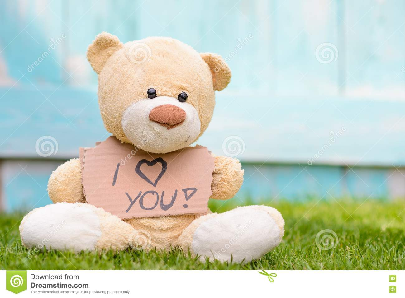 Teddy bear holding cardboard with information I love you