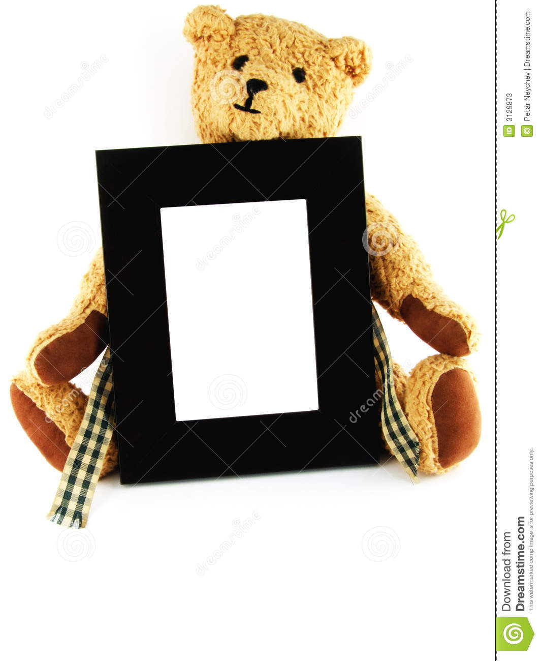 Teddy Bear Holding Frame stock image. Image of frame, bear - 3129873