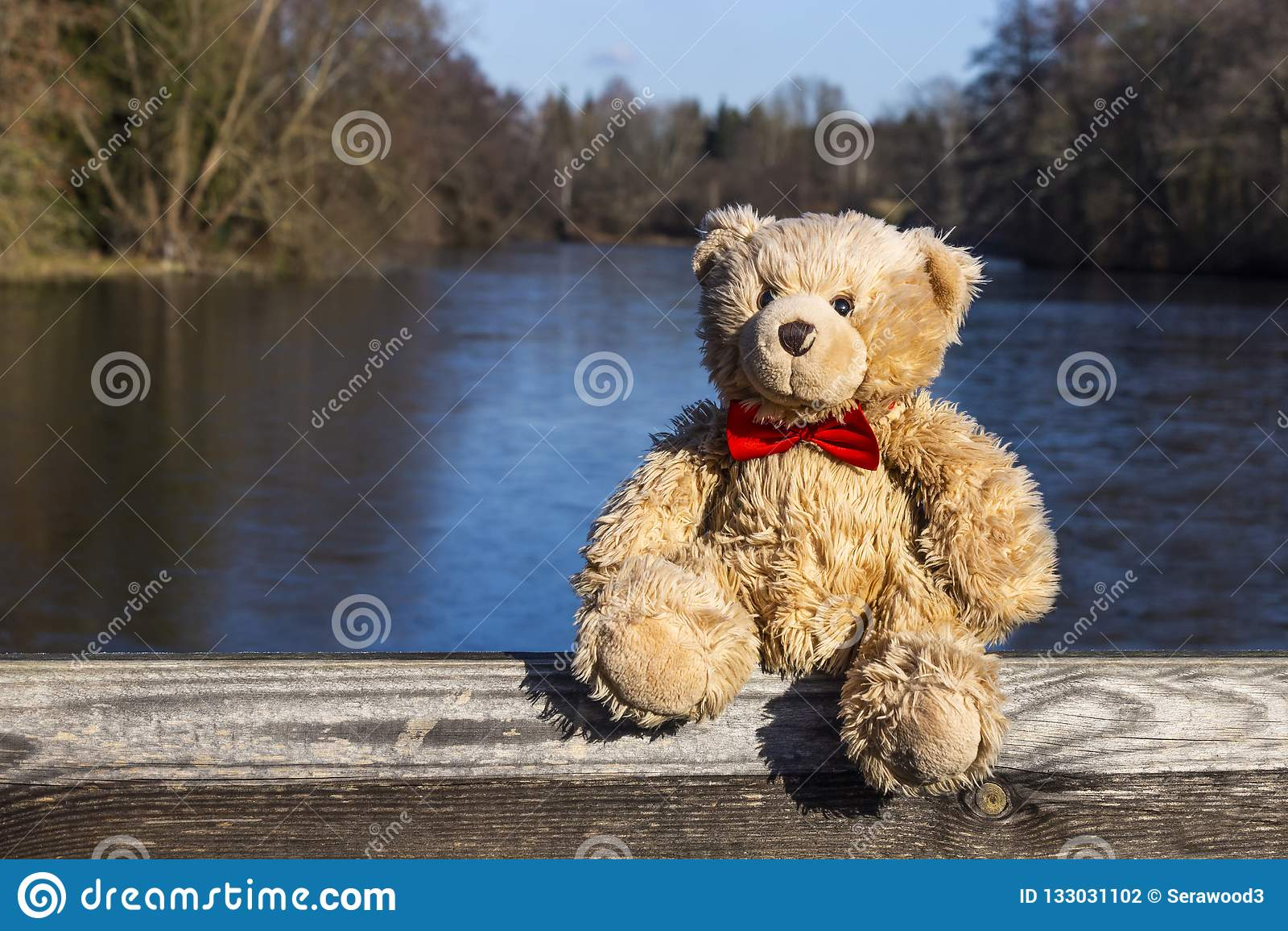Teddy bear near partially frozen pond in winter.