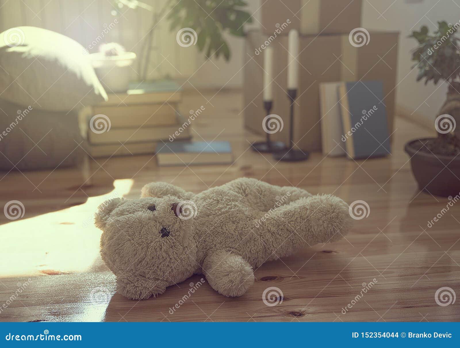 Teddy Bear på golvet och de flyttande askarna, materialen och växterna i nytt hus