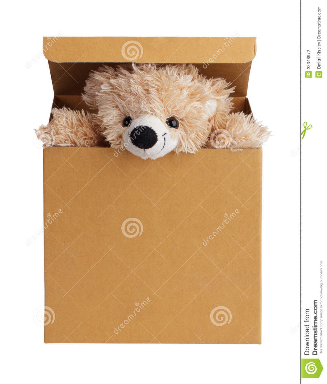 Teddy Bear Peeking Out Of The Box Stock Photo - Image ...