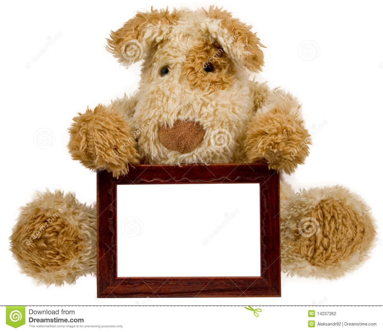 Teddy Bear With Photo Frame Stock Photography Image