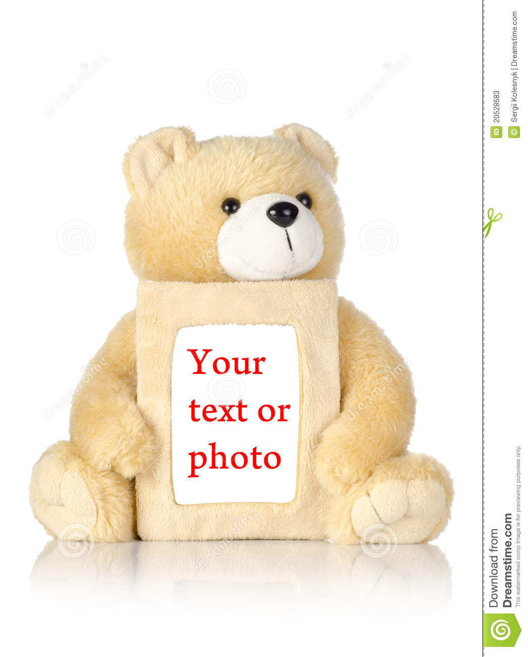 Teddy Bear With Photo Frame Stock Photo 20528683 - Megapixl
