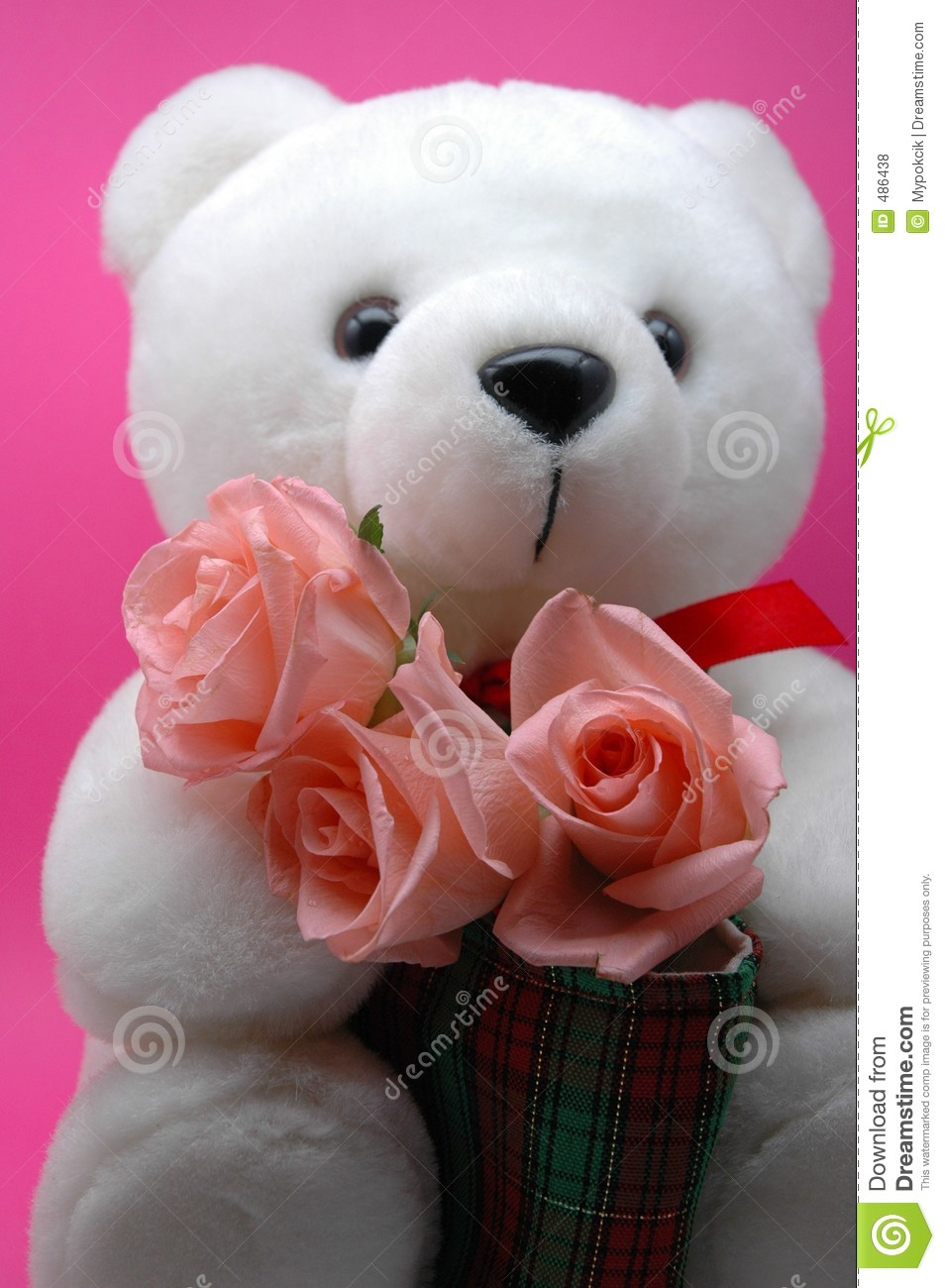 Teddy bear with pink roses - photo#3
