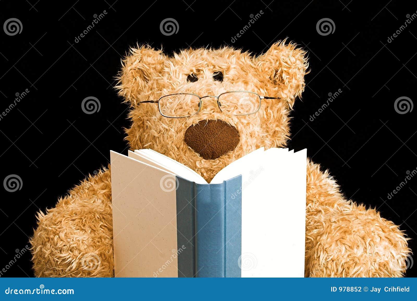 Teddy Bear Reading Stock Photography Image 978852