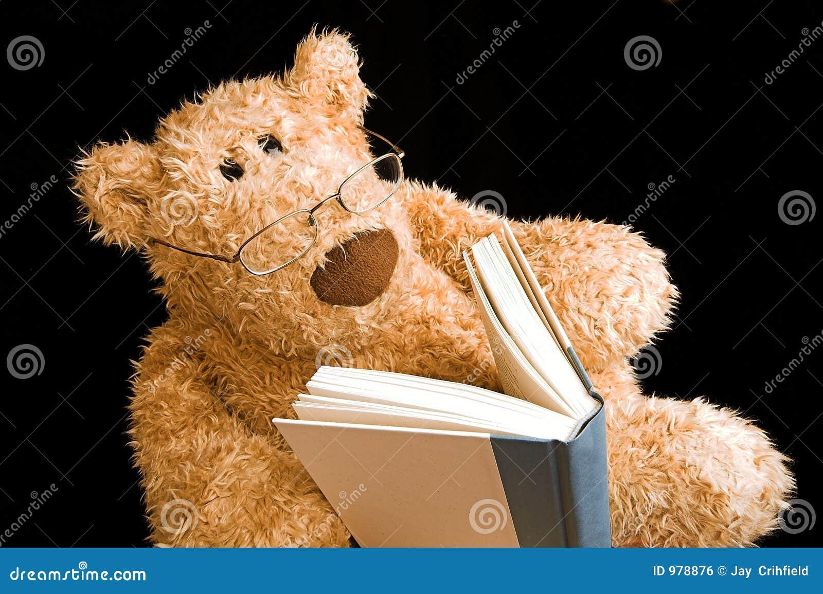 Teddy Bear Reading Royalty Free Stock Image Image 978876