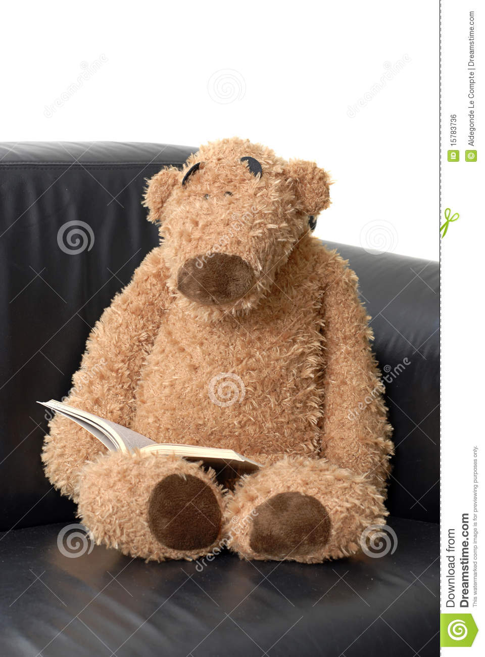 teddy bear reading a book stock photo image of books 15783736