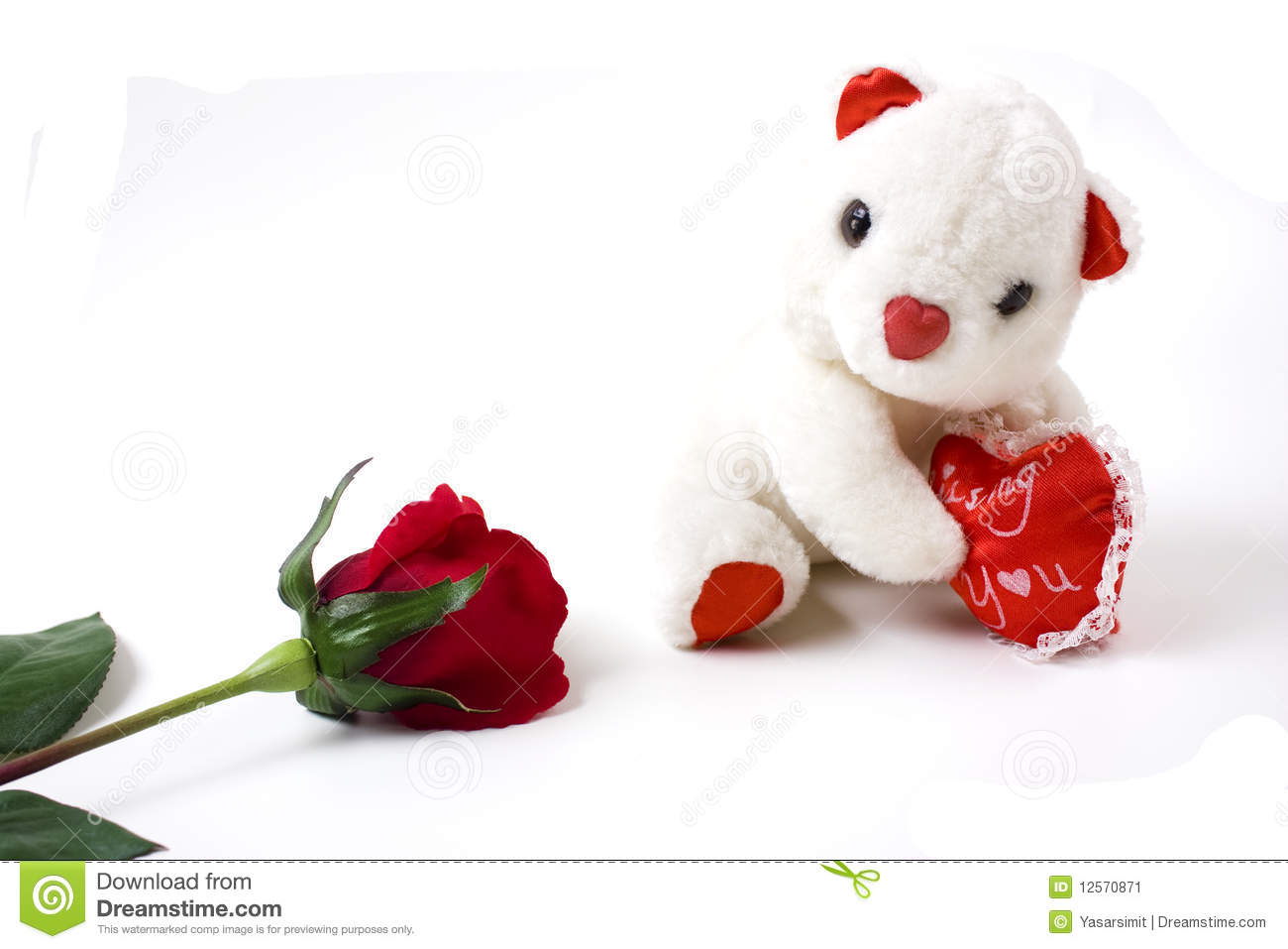 White Teddy Bear And Red Rose