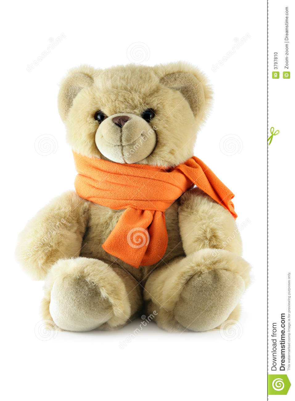 Knitting Pattern For Teddy Bear Scarf : Teddy Bear With Scarf Stock Photo - Image: 3797810