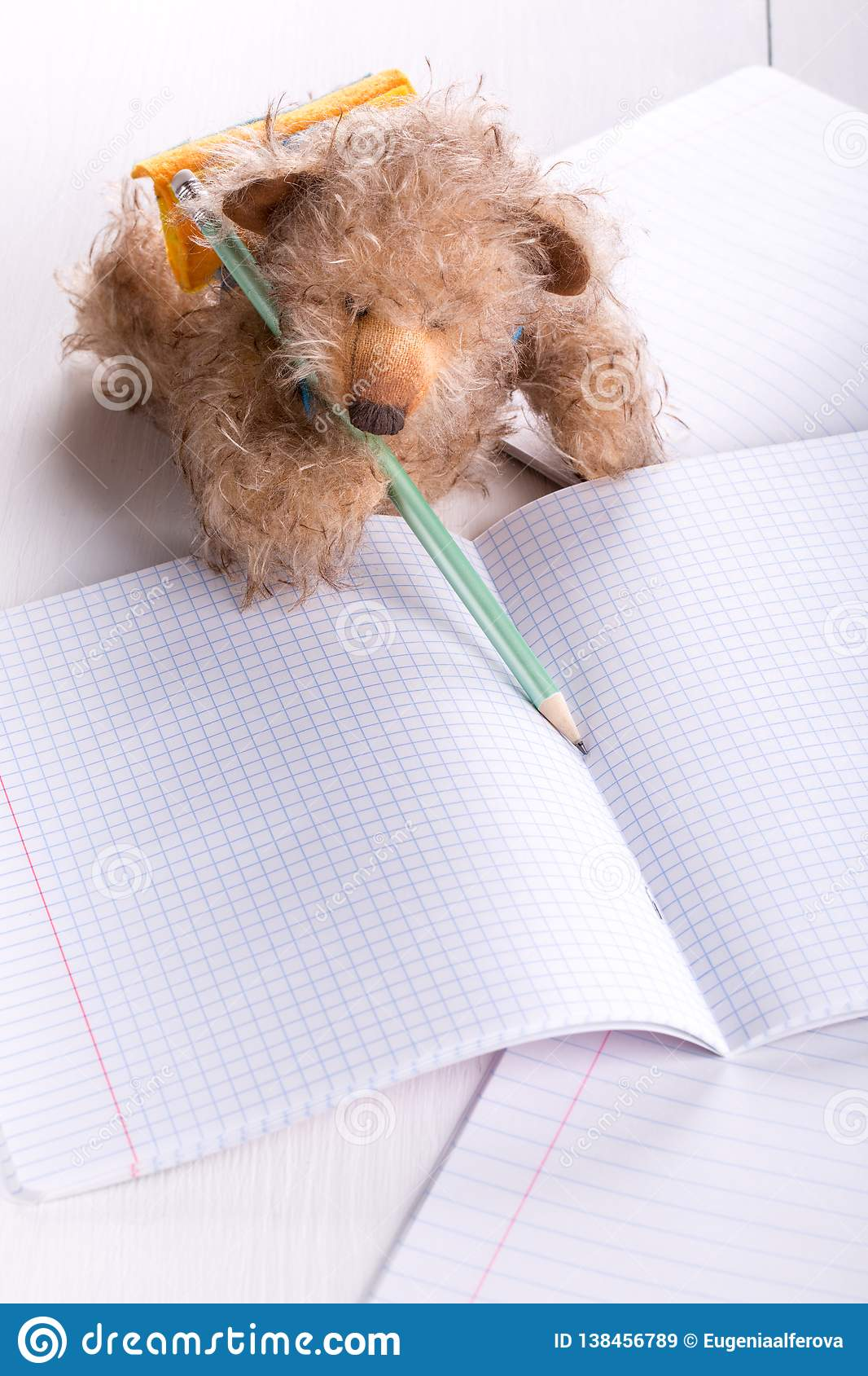 Teddy bear schoolboy